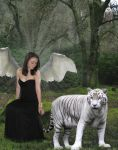 White Tiger Angel by Colliemom