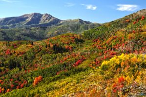 Fall Mountainside by Moohoodles