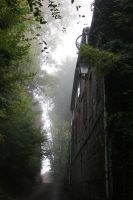Foggy streets by Icedrop21