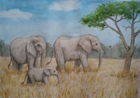 -C- African Elephants by The-Purring-Teapot