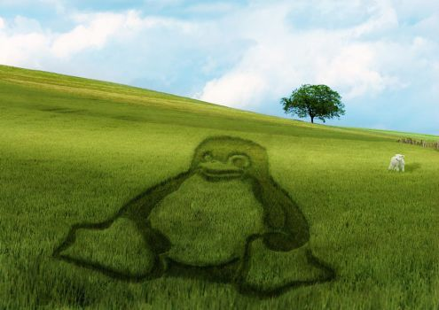 Linux wallpaper by varian