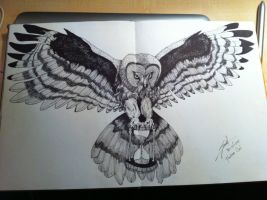 Fineliner owl by SjoerdN