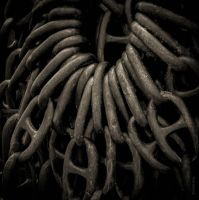 Unchain my Heart by tholang