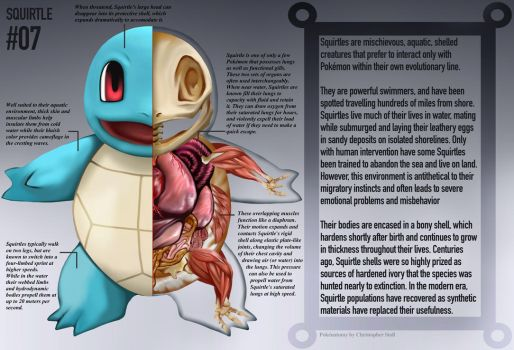 Squirtle Anatomy- Pokedex Entry by Christopher-Stoll
