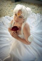 A rose from my love by lustre-luck
