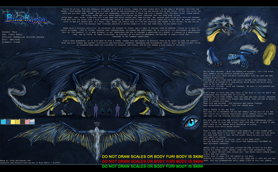 Blue Hasia Ref Sheet by Bluehasia