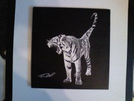 Scratchboard Tiger by TaylorSch