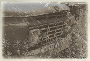 Old Ford Red OLD FASHION by BeautifulNightmare66