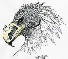 Hawky ppoootaa by PostMortem