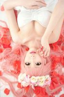 Beautiful Roses. by MonCosplay