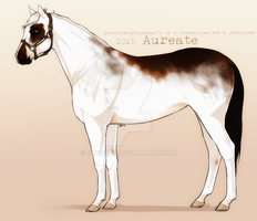 TCrS Aureate by noebelle