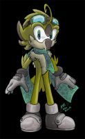 Olive the Owl - Sonic form by Olive-Owl