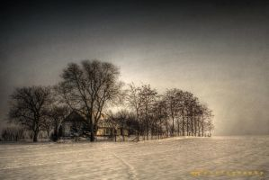 Winter in Vojvodina by roofy1963