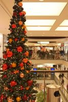 Christmas is coming by Budeltier