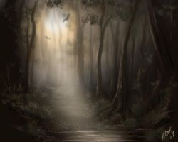 Misty Glade by beccacox