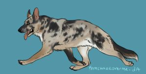 :: merle gsd design for windheaven-kennels :: by KamikazeOverMe