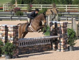 Stock: Jumping by equizotical