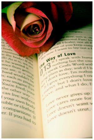 *������ ����~�� �����~���* The_Way_of_Love_by_christians.jpg