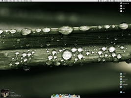 OS X 2009-08-03 by amg
