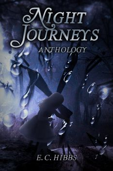 Night Journeys Anthology by E. C. Hibbs by ElphameArts