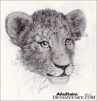 Little lion by AluStaire