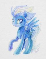 Night Glider by Maytee