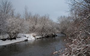 Winter at the Creek by BowEchoMedia