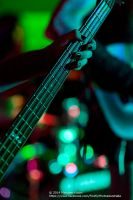 The Bassist by FireflyPhotosAust