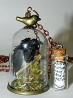 Quoth the Raven!, Glass Necklace by Secretvixen