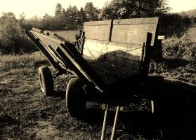 Country in sepia by AlisaTamna