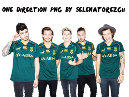 One Direction Png by selenatorezgii