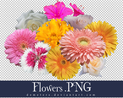 Large Flowers.PNG by demeters