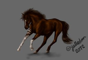 Running Horse by Bombuska