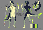 Pebble ref sheet by EagleIronic
