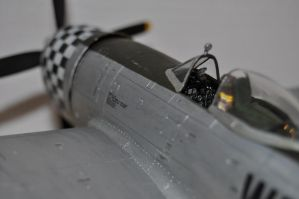 P-47D Finished 6 by SindreAHN