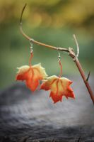 Earrings Gifts of Autumn by Irentoys