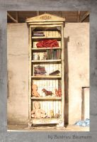 cupboard by BeatriceBaumann