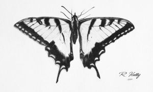 Swallowtail Butterfly by RGHOLLY