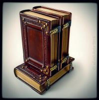 Leather journals... by alexlibris999
