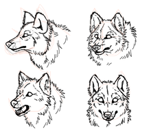 Realistic wolves head practicing by Kyuubi83256