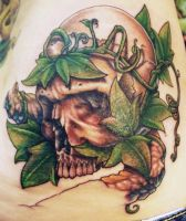 Skull with Vines by galaric