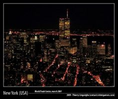Twin Towers New York 2001 - 3 by ShiniGAMERS