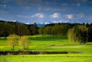 Bavarian Spring by mutrus