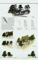 Landscape Architecture by nwebb