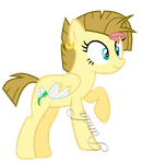 R63: Flitting Fly ''Flit'' by iPandacakes