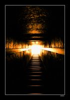 The light you'll see by BaciuC