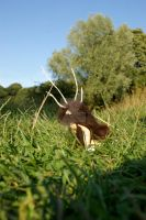 The Antlered Man by SteamPoweredFish