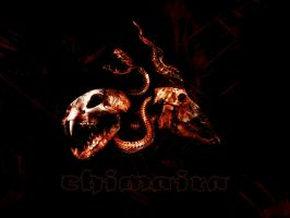 Chimaira - 'Beast' Wallpaper by mysteu