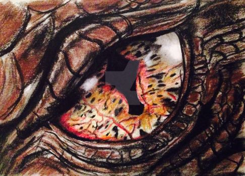 The Eye of Smaug by cehavard90