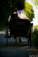 TKE Wedding - Carriage by olahaldor